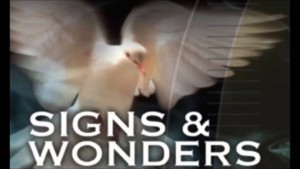 """BIBLICAL SUPPORT FOR """"SIGNS AND WONDERS"""""""